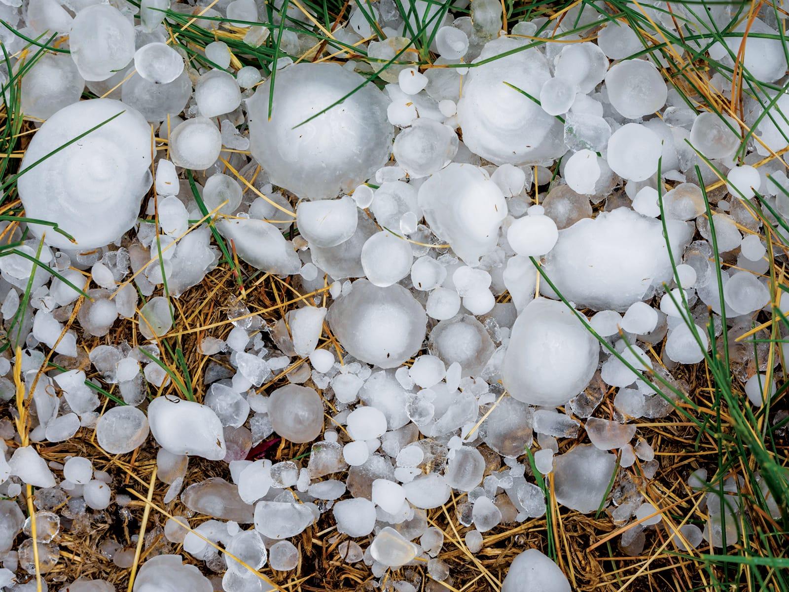 Hailstones_Jeff-March_Alamy-Stock-Photo